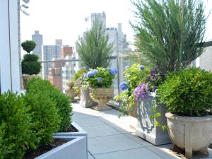 Penthouse Container Garden