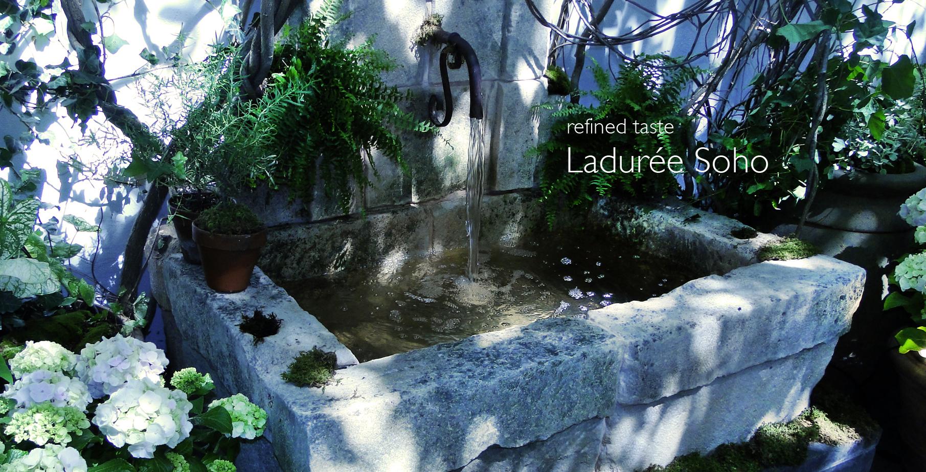 Laduree_Final